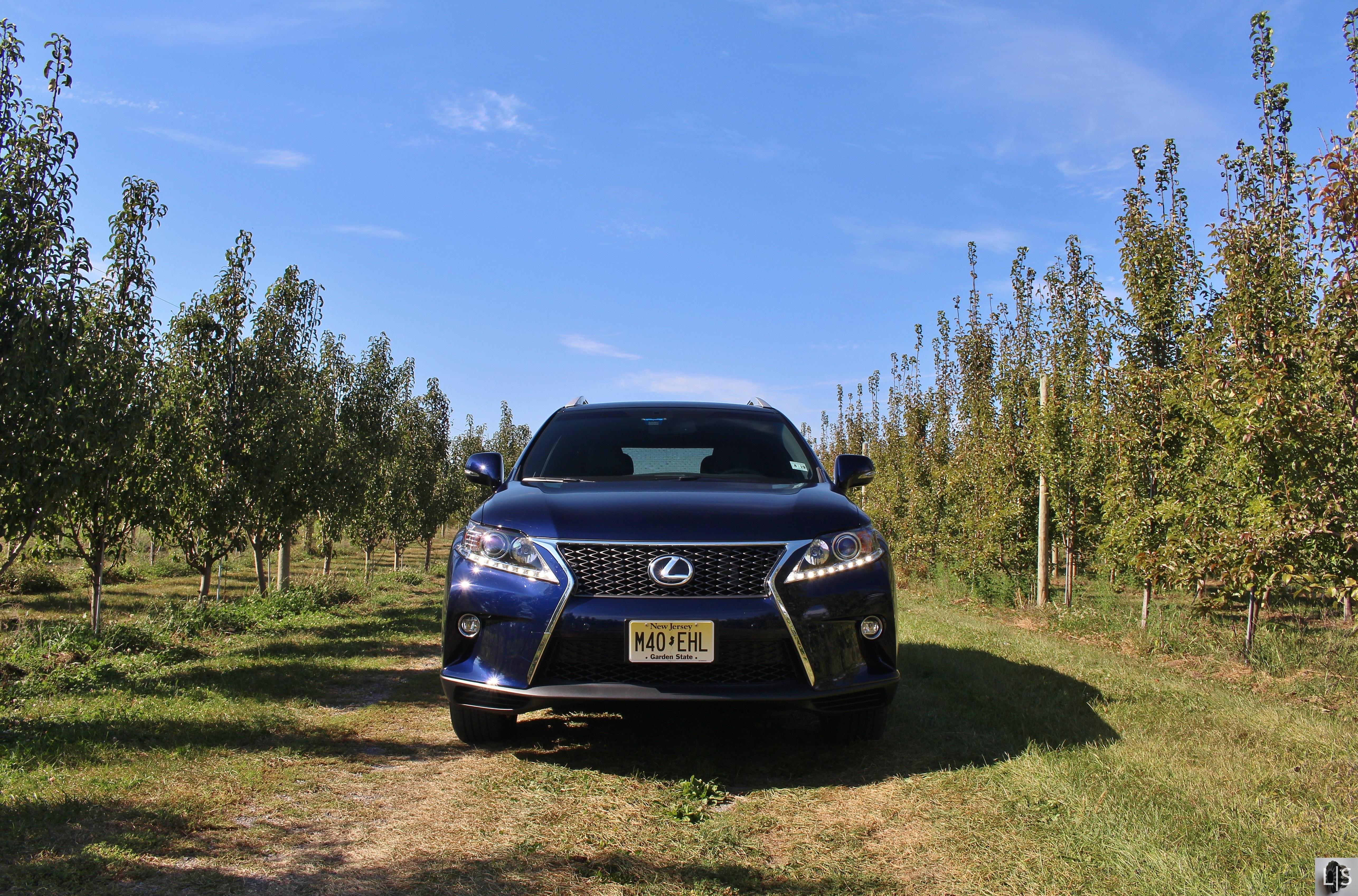 drive turbo sport lexus review rx f fsport first suv