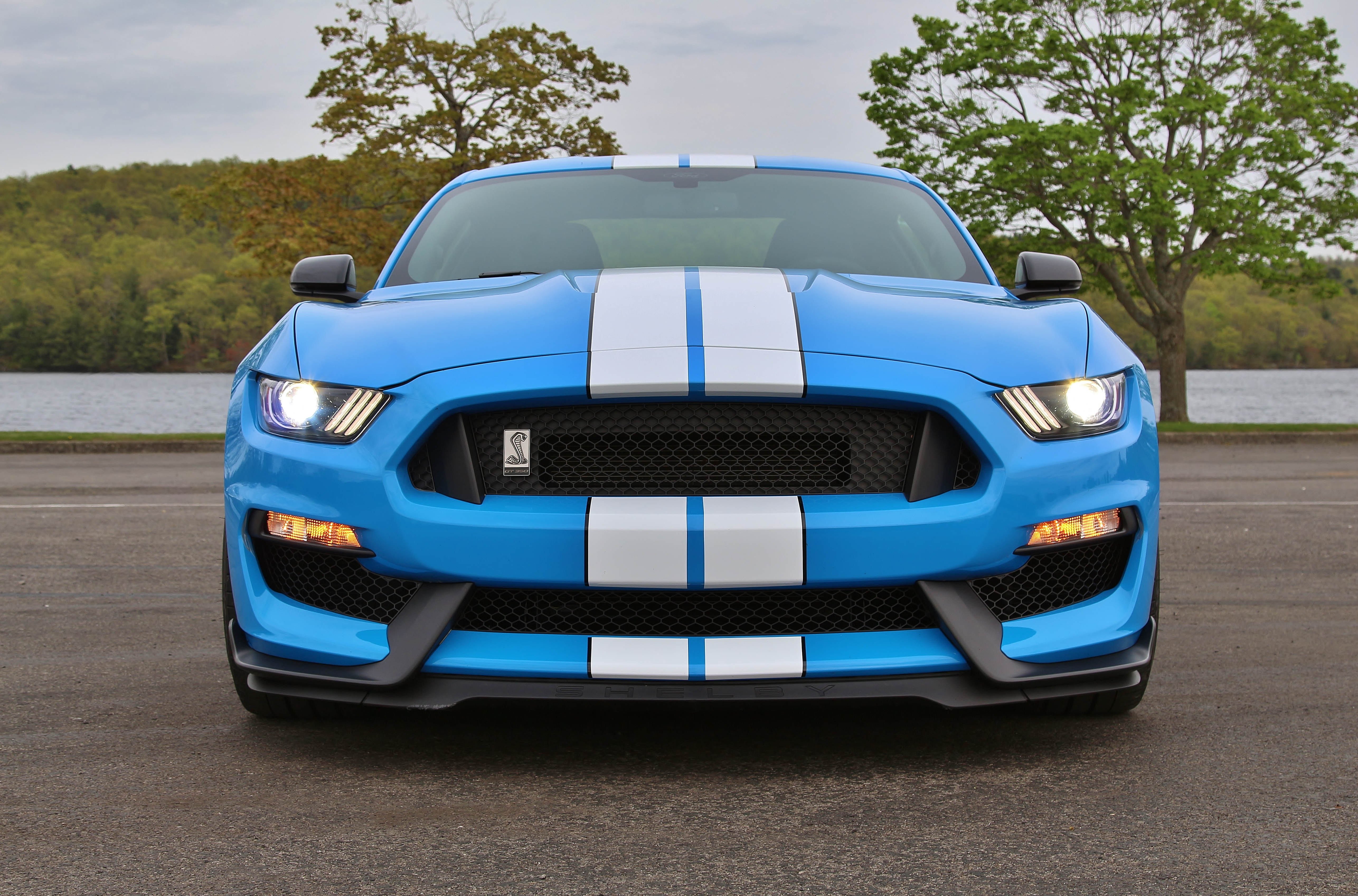 Thoroughbred: Ford Mustang Shelby GT350 – Limited Slip Blog